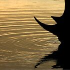 Rhino @ Sunset by Marie Strydom