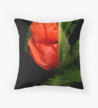 Opening Poppy Throw Pillow