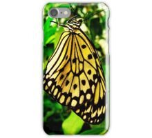 Tree Nymph 3 iPhone Case/Skin