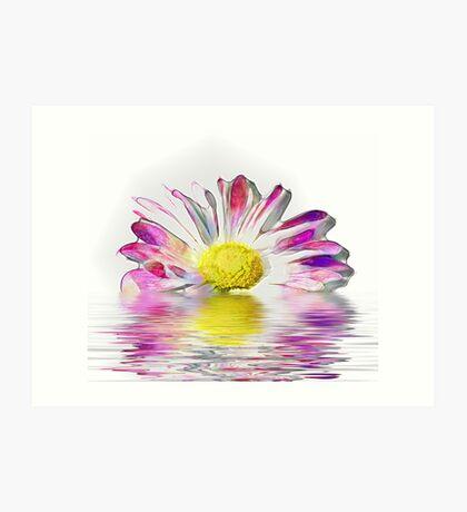 Multi-coloured flower Art Print