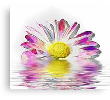 Multi-coloured flower Canvas Print