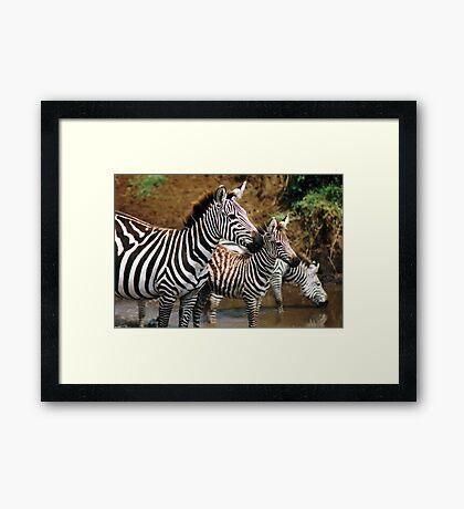 Striped Family Framed Print