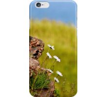 Cliff Hangers iPhone Case/Skin
