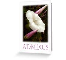 ADNEXUS Greeting Card
