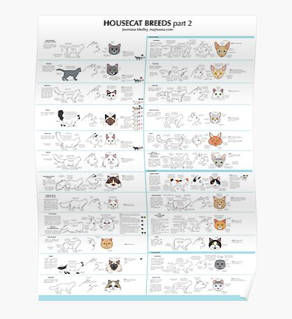 Housecat Breeds part 2 Poster