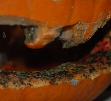 Decaying pumpkin mouth by HannahLstaples