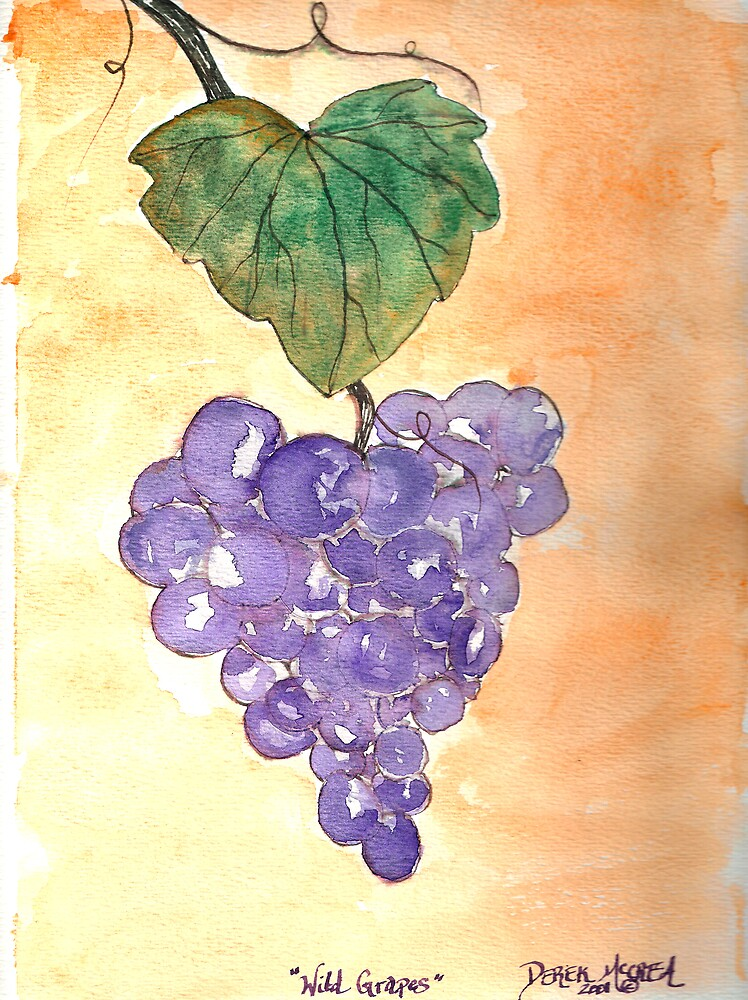 Wild Grapes by derekmccrea