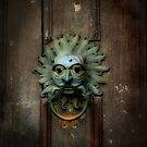 Sanctuary Knocker by Barbara Gordon