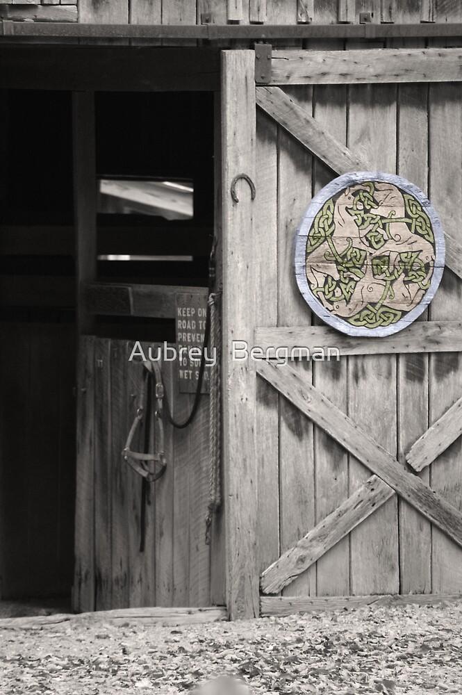 The barn door by Aubrey  Bergman
