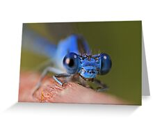 Damsel Greeting Card
