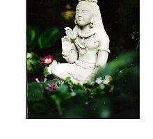Hindu God Siva  by Danpatterson