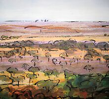 Outback Plains by Debra Loty