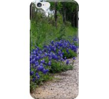 heart of the country iPhone Case/Skin