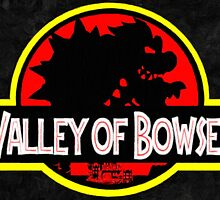 Valley of Bowser by vgprints
