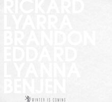 House Stark 2 Typography series II by P3RF3KT