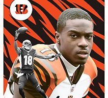 AJ Green Baseball Card by BeinkVin