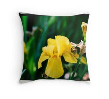 Yellow Iris Version 2 Throw Pillow