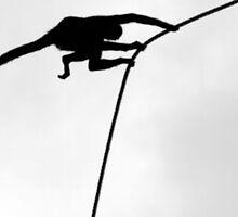 Swinging by JoLennox
