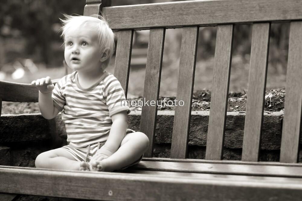 Thinking by monkeyfoto