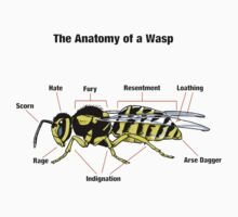 The Anatomy of a Wasp Kids Clothes