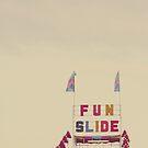 Fun Slide by ALICIABOCK