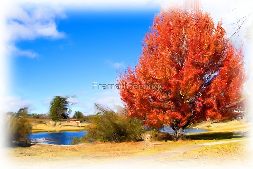 Autumn Colours by FramedFeelings