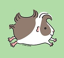Leaping Guinea-pig ... Grey and White by zoel