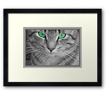 Envious Eyes Framed Print
