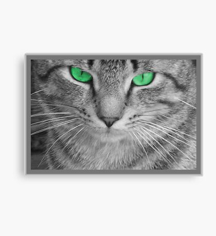 Envious Eyes Canvas Print