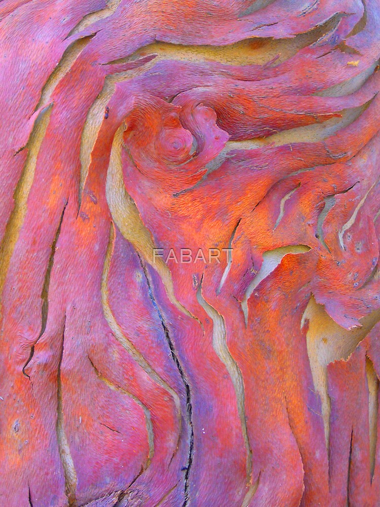 Bark by FABART