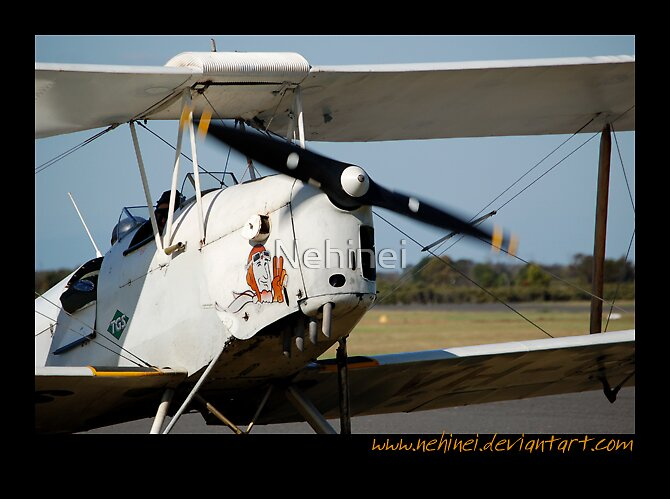 Tiger Moth by Nehinei