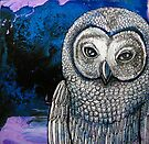 Night Owl by Lynnette Shelley