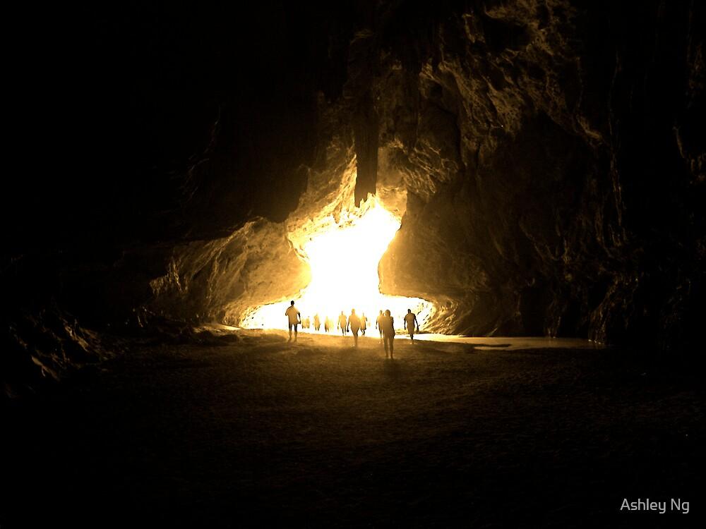 Toward the Light by Ashley Ng
