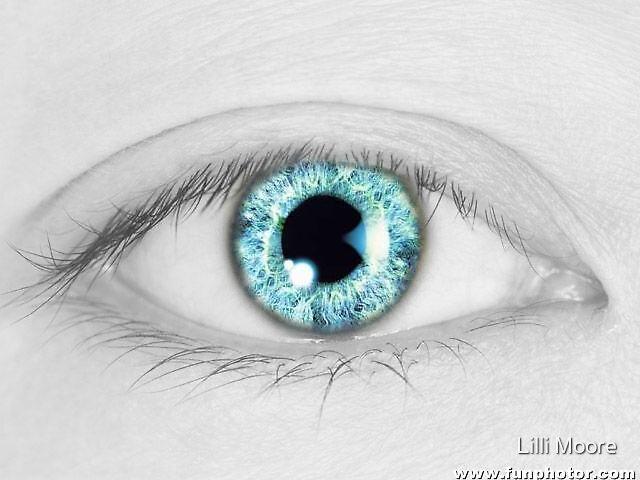 eye eye  by Lilli Moore