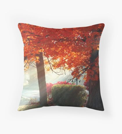 Filtered Light - Fall Colours Throw Pillow