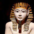 The Pharaoh by annalisa bianchetti