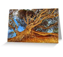 The Ravages of Time! Greeting Card