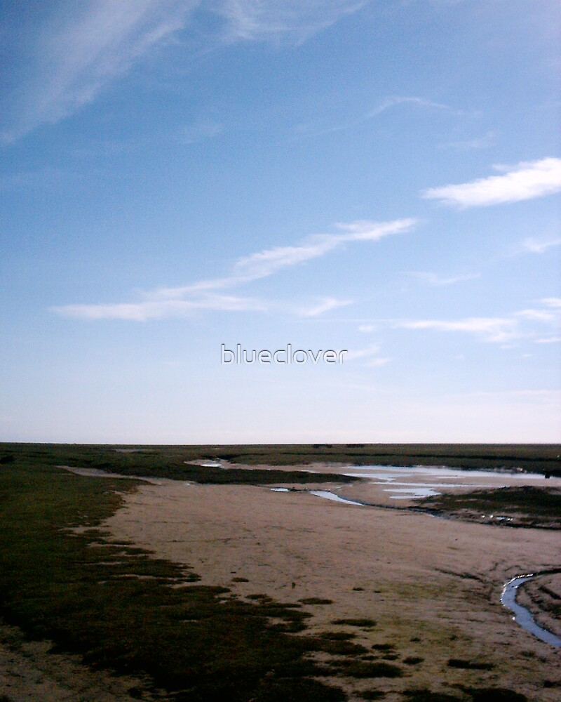 Morecambe Bay, looking from Flookburgh by blueclover
