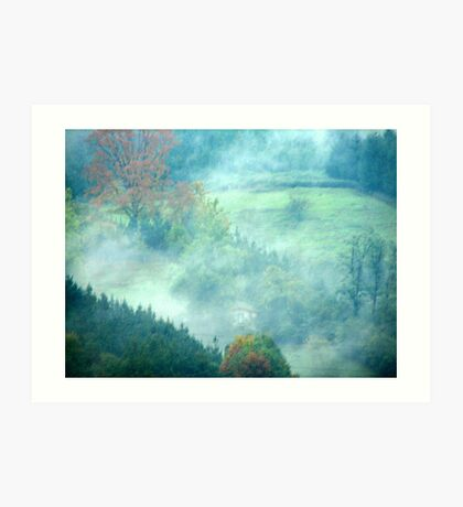 misty valley Art Print