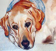 My Cheddar Boy by Nancy Pobiak