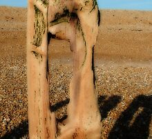 Winchelsea Beach by Ian Elmes