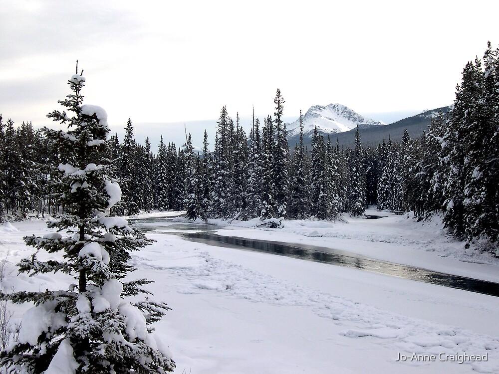 Winter Solitude by Jo-Anne Craighead