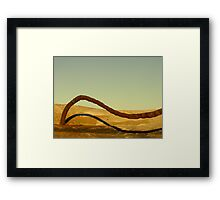 Dune Surfer Framed Print