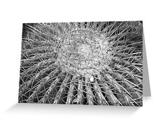 BW Cactus Greeting Card