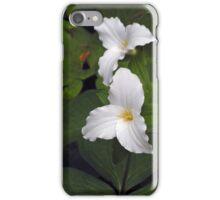 Two White Trilliums iPhone Case/Skin