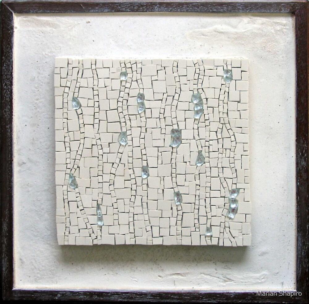 Rain by Marian Shapiro