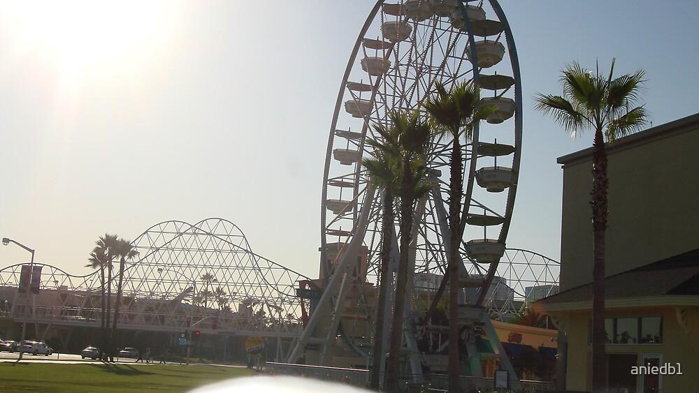 Ferris Days off  by aniedb1