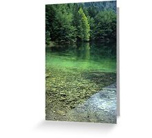 Idyll Greeting Card