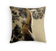 It Must Be Love Throw Pillow