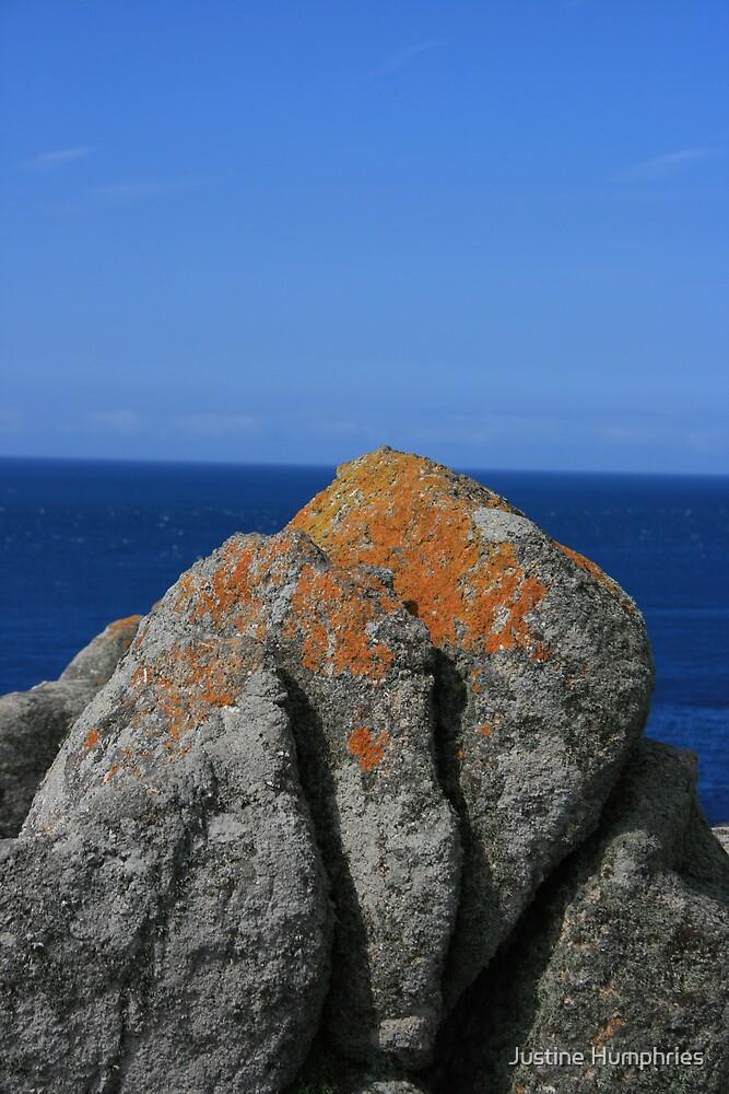 Orange & Blue by Justine Humphries